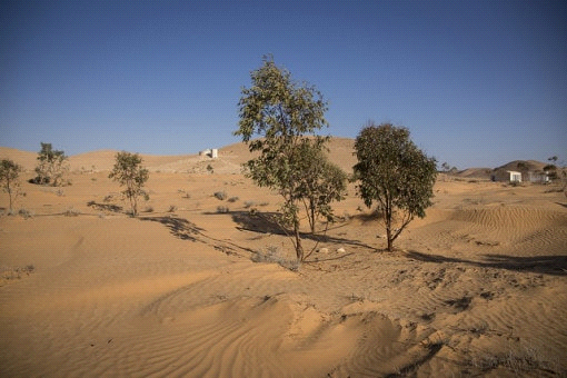 Could Eco-Parks Be The Solution To The Growing Desert?
